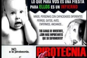 """""""En Pinamar está prohibida la venta y uso de pirotecnia"""" – Concejal Alejandra Apolonio"""