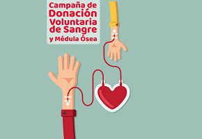 En este momento estás viendo Campaña de Donación de Sangre en UADE Costa – Viernes 5/4 – Fernanda Grimaldi